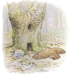 """Dessin de Beatrix Potter (1866-1943) naturaliste et écrivaine anglaise. Elle est connue pour ses livres destinés à la jeunesse. La vie de Beatrix Potter a été adaptée au cinéma en 2006 """"Miss Potter"""" avec Renée Zellweger et Ewan McGregor."""