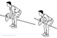 Bent Over Two-Arm Long Barbell Row