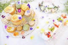 GARDEN Clipする Botanical Gardens, Bloom, Birthday Parties, Table Decorations, Ethnic Recipes, Party Ideas, Wedding, Studio, Girls
