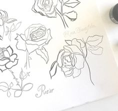 Taking a little break from writing to play with ink and brush for the latest #matsbootcamp #makeartthatsells mini assignment... roses!!!  . . . . #roses #floralillustration #illustration #brushandink #womenwhodraw #flowerart #sketchbook #draweveryday #artlicensing