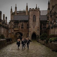 harry potter shared by ᴄʜᴀʀʟᴏᴛᴛᴇ on We Heart It Image discovered by ᴄʜᴀʀʟᴏᴛᴛᴇ. Find images and videos about harry potter and hogwarts on We Heart It – the app to get lost in what you love. Boarding School Aesthetic, My Academia, Inka Williams, Into The West, Slytherin Aesthetic, Old Money, Sombre, The Secret History, Story Inspiration