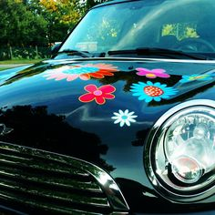 SPRING FLOWERS FOR YOU CAR Springtime – and soon everything will be blossoming! We give bouquets to our loved ones – but have you ever considered giving your beloved car a flower or two? Visit our redesigned website www.myowncar.eu