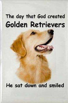 God created Goldens