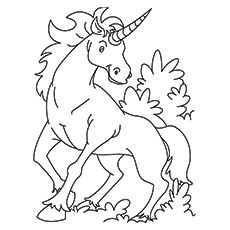 Unicorn Coloring Pages Kirin