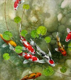 Terry Gilecki is a highly aclaimed painter of the beautiful Koi fish and the surreal world they live in. His paintings and prints are collected world wide. Koi Fish Drawing, Fish Drawings, Koi Art, Fish Art, Tattoo Pez, Koi Painting, Fish Paintings, Watercolor Fish, Koi Fish Pond