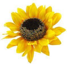 """This Sunflower Bush is perfect for making swags, wreaths, flower arrangements and so much more. Lifelike appearance and low maintenance make silk floral designs a perfect decoration for every room.    The top flower and leaf portion is approximately 18"""" with a stem measuring about 4"""" long. There are nine blooms measuring about 5"""" wide and leaves are about 2 1/2"""" x 3 1/2"""" to 3 3/4"""" x 4 1/2""""."""