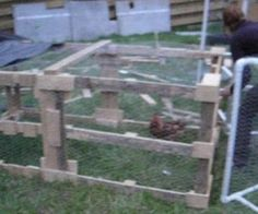 Turn Old Pallets Into A Chicken Tractor!
