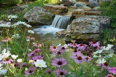 Cascade bassin de jardin- 27 idées pour créer votre havre de paix