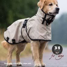 """""""Imagen relacionada"""" I have great """"Squall"""" one from Land's End. Collar is not so high. Fit & function are SUPERB! Large Dog Sweaters, Pet Clothes, Dog Clothing, Dog Raincoat, Dog Jacket, Dog Items, Dog Dresses, Dog Coats, Whippet"""