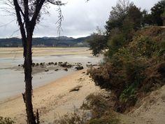 Abel Tasman lonely beach
