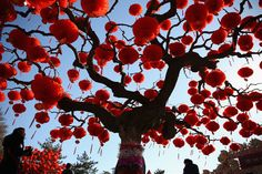 #chinese_new_year celebrated almost for 15 days in all across china according to Chinese Lunisolar calendar