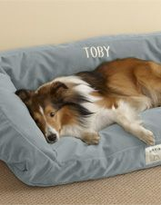 Bring new life to your pet's favorite spot with our ToughChew dog bed cover. Memory foam bed 'lounger' style. LIKE IT