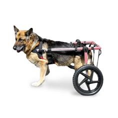 Walkin' Wheels Dog Wheelchair XLarge Pink - Commercial Bargains Inc. - 1