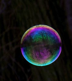 The World in a soap bubble