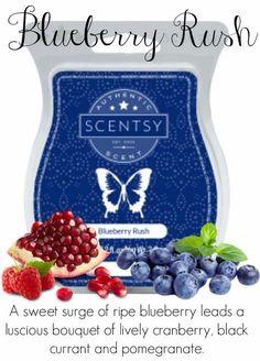 Blueberry rush. Http://briannestanley.scentsy.us