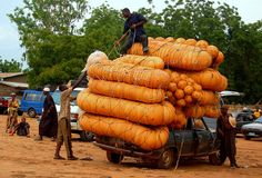 Pumpkins at the market Malanville, Northern Benin, West Africa