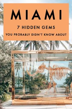 Looking for fun, original, and unusual things in Miami? I've got the ultimate Miami guide with quirky things to do that also happen to be some of the best secret things to do in Miami, Florida! #Miami