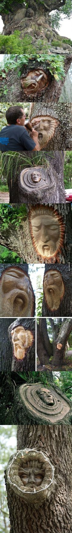 I'm not sure this is very kind to the trees....but it is amazing.