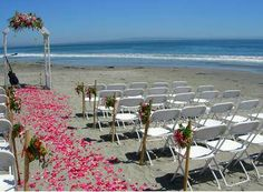 cheap beach wedding reception with petals on the beach
