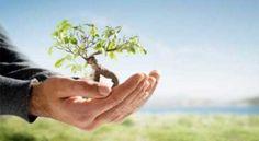 La biodiversidad es un concepto que abarca una gran dimensión, en cuanto al espacio todo aquél en donde habitan los seres vivos. Se refiere a la totalidad de los genes, especies y ecosistemas que forman parte de la biosfera del planeta. + info: http://www.ecoapuntes.com.ar/2012/10/de-la-biodiversidad-a-la-sustentabilidad/