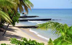 Trinidad ja Tobagossa olet lähellä paratiisia. Täällä odottavat valkeat rannat, turkoosi vesi ja ystävälliset saaren asukkaat. www.apollomatkat.fi #Tobago