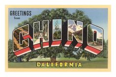 Chino, California (Prison City). this is so funny! a postcard for chino!
