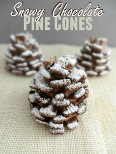 These Snowy Chocolate Pine Cones are a fun treat for any holiday or winter themed party. They are pretty quick and easy to put to put together but delicious too!for the little boy that loves pinecones Winter Wonderland Birthday, Winter Birthday, Frozen Birthday Party, Baby Birthday, Birthday Ideas, Christmas Treats, Holiday Treats, Christmas Cookies, Holiday Recipes