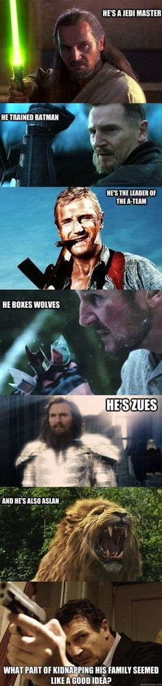 He's a jedi master He trained batman He's the leader of the A-team He's Zues And he's also Aslan What part of kidnapping his family seemed like a good idea? He boxes wolves Got to love Liam Neeson Memes Humor, Dankest Memes, Funny Jokes, Hilarious, Dad Humor, Meme Comics, Funny Images, Funny Pictures, Funniest Pictures