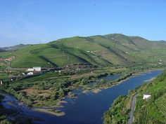 The Douro River valley running through the headlands of Peso da Régua