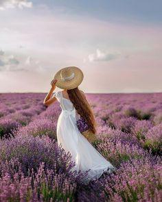 Lavender Fields, Lavender Flowers, Lavander, Farm Photography, Portrait Photography, Lavendar Painting, Beautiful Images, Beautiful Flowers, Valensole