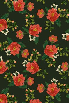 Holiday Floral by shelbyallison - Pink hand painted flowers with emerald and green leaves on fabric, wallpaper, and gift wrap. Bold coral flowers on a deep green background with white flower accents.