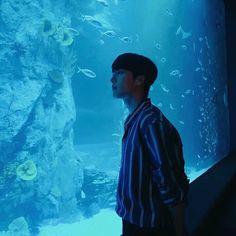 for likes korean movie Korean Wave, Korean Men, Asian Actors, Korean Actors, Korean Drama Movies, Boy Photography Poses, Joo Hyuk, It Movie Cast, Kdrama Actors
