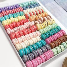 We have 22 flavours today... WHAT'S YOUR FLAVOUR? #valentines #vday2016 #vday #happyfriday #tgifridays #macaronz #macarons #cakes #cupcakes #chocolate #downtown #brampton #mississauga #toronto #gta