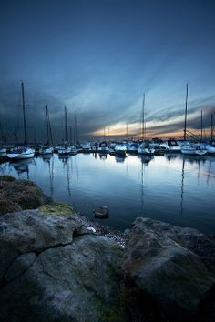 Kirkland Washington Waterfront With Boats Lived In As A Child
