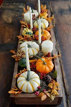 schön dekorierte Holzkiste mit Mini-Kürbissen und länglichen weißen Kerzen