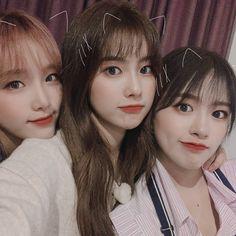 "official_IZONE on Twitter: ""[#OMYIZ] 어디서나 사랑받는 친화력 백만 점 마리댕과🐶❣ 웃음 참아보려던 위즈원까지 사르르 웃게 만든 사랑스러운 혜원🐹 예나까지🐥 막내딸과 친구들 오늘도 맛있게 잘 먹고🍽 재밌게 잘 웃다 갑니다🤣💕… "" Kpop Girl Groups, Kpop Girls, My Girl, Cool Girl, Gfriend Yuju, Love U So Much, Yu Jin, Japanese Girl Group, Extended Play"