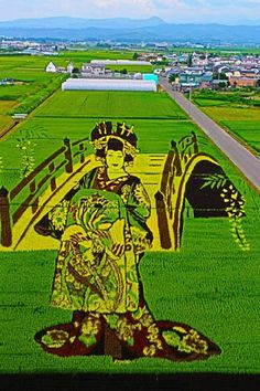 Rice field art in Inakadate, Aomori, Japan@【花魁とハリウッドスター】 田舎館村田んぼアート2013 | じゅずじの旦那 Aomori
