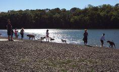 Tuesday, 8 October 2013; Shawnee Mission Lake, Lenexa, Kansas; Photographed: 8 October 2013
