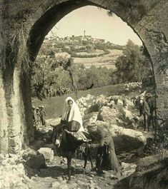 Millions Of Muslims And Chinese Getting Ready To Convert To Christianity Through The Virgin Mary To Defy And Fight Against The Muslim Nation Of Turkey Palestine People, Palestine History, Israel History, Palestine Art, Old Pictures, Old Photos, Terre Promise, Naher Osten, Baroque Architecture
