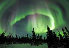 aurora borealis at Manitoba's Wapusk National Park