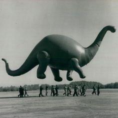 Dino-balloon