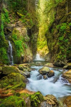 Lynn Valley canyon, Vancouver, Canada, I have been hiking here before. It's absolutely beautiful!