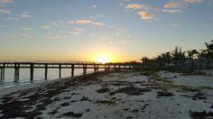 Moni Bahamas