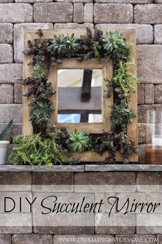 Dwellings By DeVore: DIY Succulent Mirror