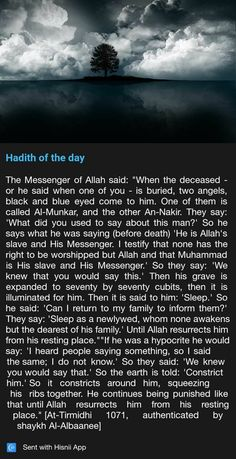 Messenger of Allah Prophet Muhammad Quotes, Quran Quotes, Allah Quotes, Islam Hadith, Islam Quran, Alhamdulillah, Islamic Inspirational Quotes, Islamic Quotes, Hadith Of The Day