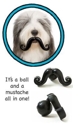 It's a ball and a moustache all in one!