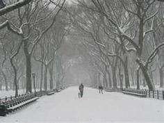 Am loving New York, cant wait to go back next year for Christmas shopping :)        #ImDreamingOf @Radley_London