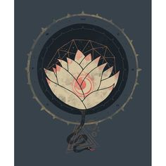 Lotus art print by Hector Mansilla
