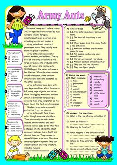 ARMY ANTS (Reading Comprehension)