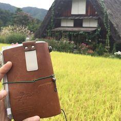 Washi Tape Masking Tape Midori Travelers Notebook Limited Star Ferry Edition